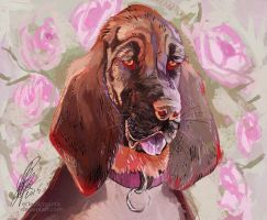 Bloodhound by EclecticManta
