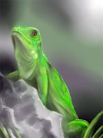 Daily animal 2 - Green Iguana by DanjiIsthmus