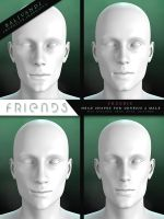 FREEBIE - Friends G2M Head Shapes by Virtual-Fox