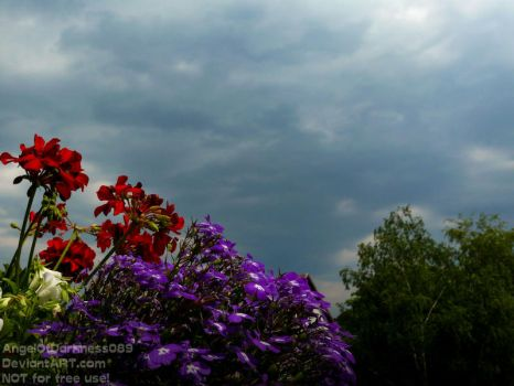 Thunderstorm is coming... by AngelOfDarkness089