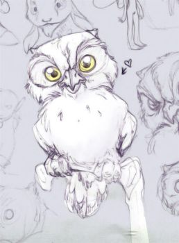 An owl on a perch - Sketch by thalia-is-crazy