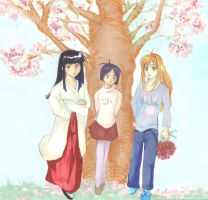 love hina (cherry blossom) by yoolin