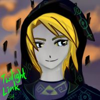 twilight Link by Christy58ying