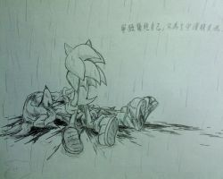 Knuckles Sonic:Friends Gone by amberday