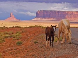 Monument Valley 2 by NB-Photo