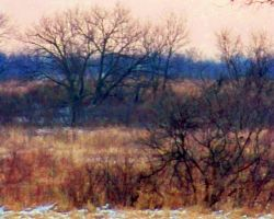 Mid Winter Dreamscape X by MadGardens
