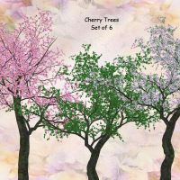 Cherry Trees by oldhippieart