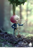 Alice Through the Looking Glass: Turnip Concept by michaelkutsche