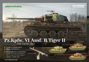 Eduard ProfiPACK of 1/35 Pz.Kpfw. IV Ausf. B Tiger by rOEN911