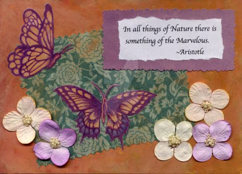Things of Nature... collage by jenneyc