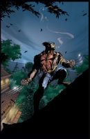 Wolverine 02 HD by RStotz
