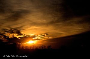 End of the Day IV by RobyRidge