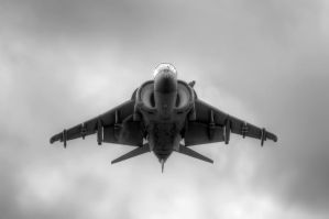 Harrier Nose to Nose by aviationbuff