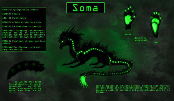 Soma Reference Sheet by alizara