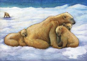 The Family Ursus Martinus by CAMartin
