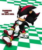 Shadow the Hedgehog by DoRiKoNo