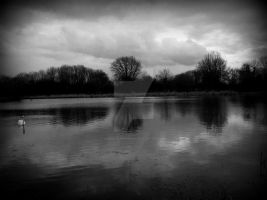 Black And White River. by sasha-sunshine0