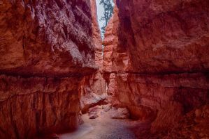 Bryce Canyon 2 by arnaudperret