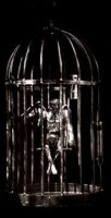 Angel in a Cage by dumont