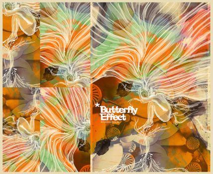 Butterfly Effect by nadydesign
