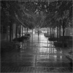 Rainy Day Morning II by Val-Faustino