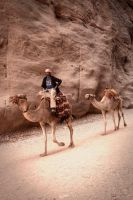 Camels in the canyon by ruthsantcortis