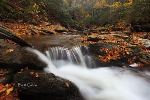 Tucquan Glen,,, by Brettc