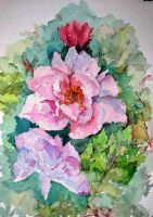 Pink peony by lapoall