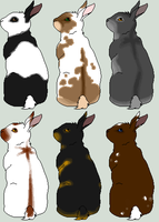 More Rabbit Adoptables by The-Halfway-House