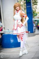 Asuna LN4 by MilanaPloy