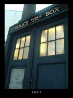 TARDIS by welsh-dragoon