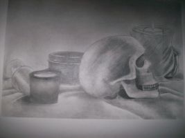 still life study 2 by silent-assassin-XIII