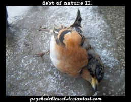 debt of nature II. by psychedelicreel