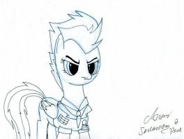 Spitfire (signed) by EwoudCPonies