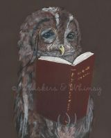 Oswin the Tawny Owl by WhiskersandWhimsy