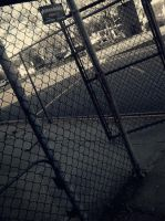 fence by x-Marionette-x