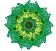 Pattys Mandala by Sulfura