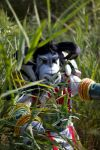 Tauren in the Reeds by dragonrage-