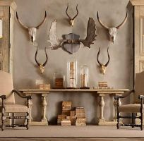 Antlers in your interior by Museumwinkel