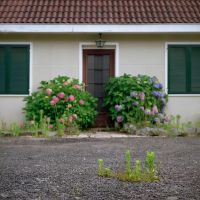 The empty house version simple by edredon