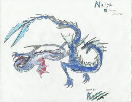 TwistedDisaster Art Trade 01 - Naiya by Kerian-halcyon
