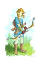 Link - Breath of the Wild by iangoudelock