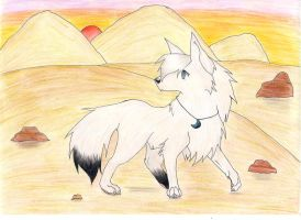 Trade with Tala-The-White-Wolf by Blackwolfraptor
