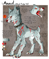 Assail Ref 2013 by Bloodied-Obsidian