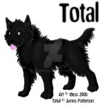 Total by Idess