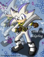 Cloud the hedgehog by Ferni21