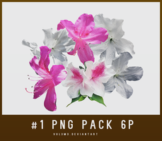 PNG pack #1 6P by Yu by vul3m3