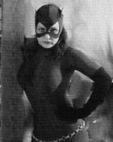 The Catwoman by HARLEYMK