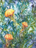 Yellow Cnidarians by bluecnidaria