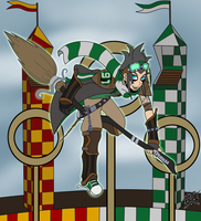 Quidditch Time !! by DaGreatVincE